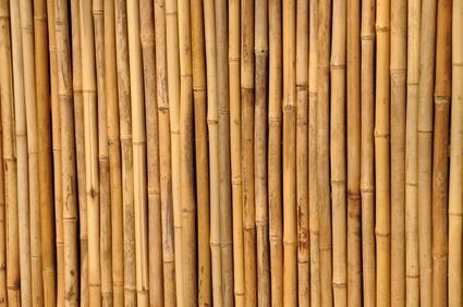Bambusmöbel: ökologisch und schick