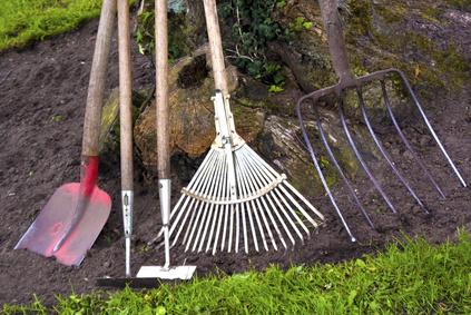 Mit dem grünen Daumen durch das Jahr – Tipps für die Arbeit im eigenen Garten